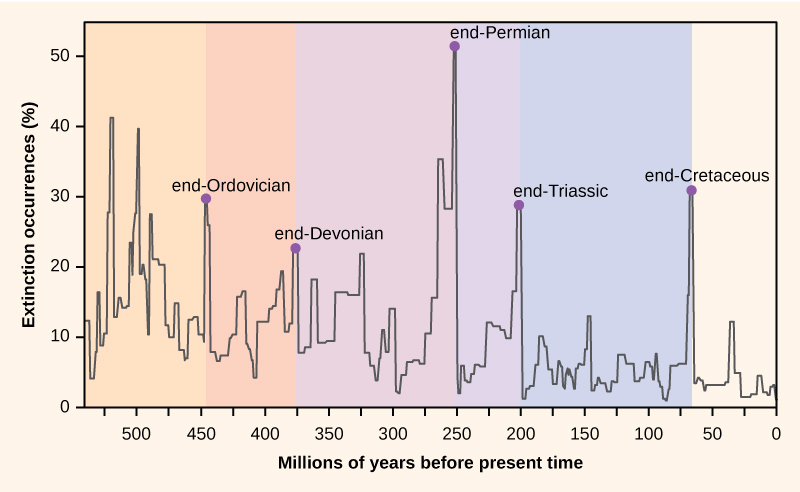 Mass extinctions, from Openstax College